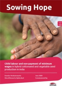 Report: Over 50% of child labourers in cottonseed farms in India are Dalits or Adivasis