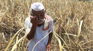MP: Recovery from tribal farmers in lieu of giving power, complaint of officer reached collector