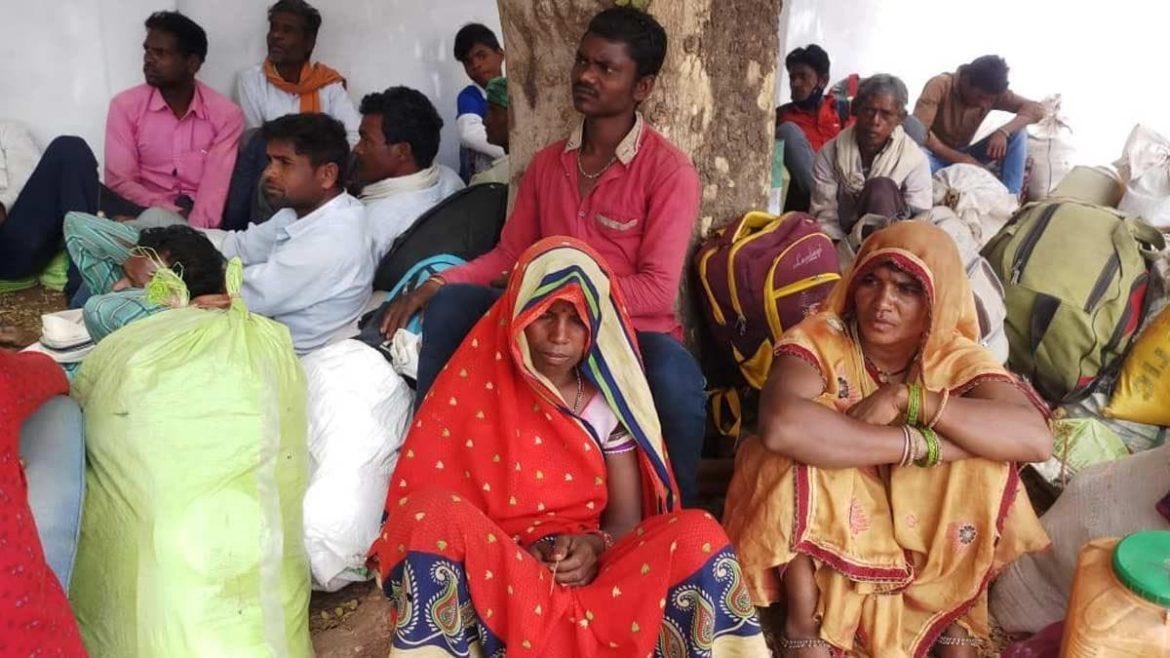 Guna: Forest Department is not giving the hard-earned money of 38 tribal laborers