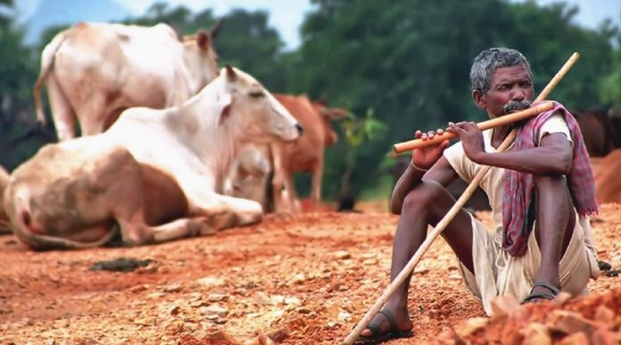 Adivasis are not Hindus. Lazy colonial census gave them the label