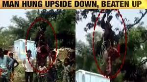 Minor 'hung' upside down from tree, thrashed by 3
